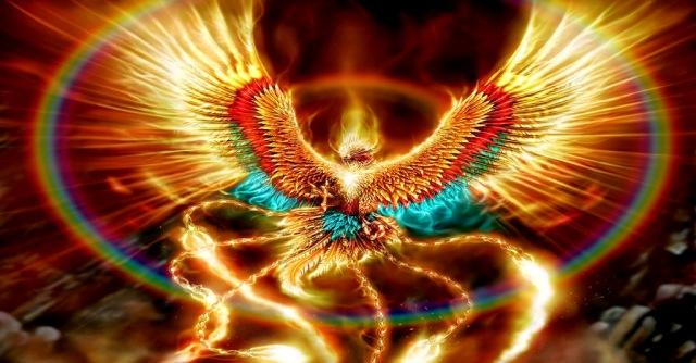 Copy-of-rising-phoenix